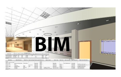 Building Information Modeling Software (BIM)